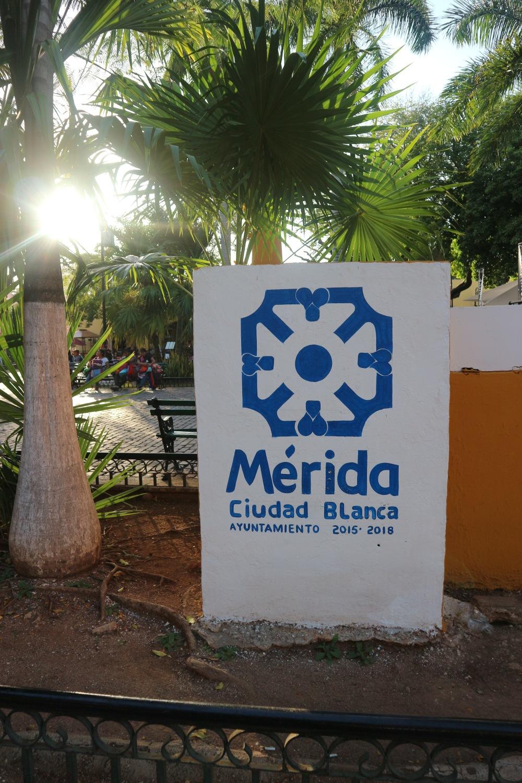 Merida mexique blog voyage yucatan itineraire